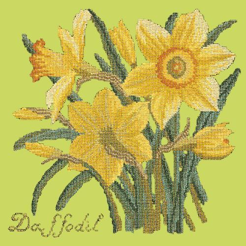 Daffodil Needlepoint Kit Elizabeth Bradley Design Pale Lime