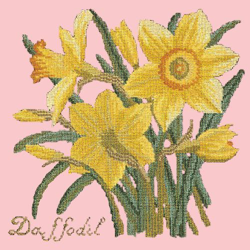 Daffodil Needlepoint Kit Elizabeth Bradley Design Pale Rose