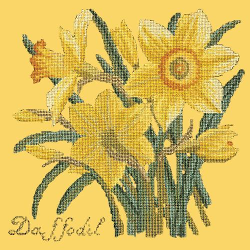 Daffodil Needlepoint Kit Elizabeth Bradley Design Sunflower Yellow