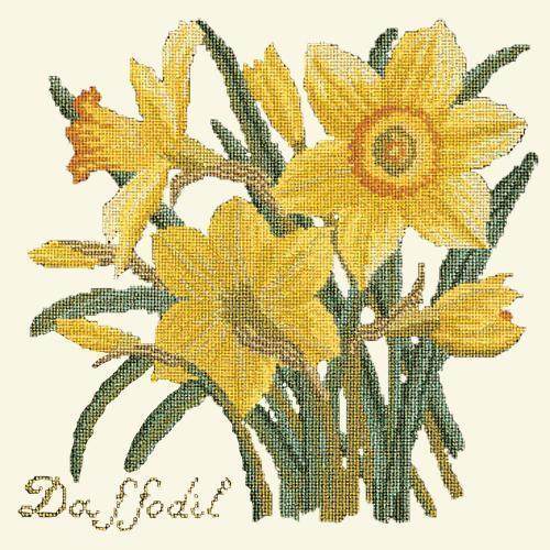 Daffodil Needlepoint Kit Elizabeth Bradley Design Winter White