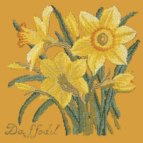 Daffodil Needlepoint Kit Elizabeth Bradley Design Yellow