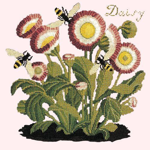 Daisy Needlepoint Kit Elizabeth Bradley Design Cream