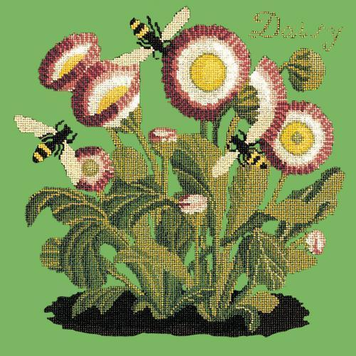 Daisy Needlepoint Kit Elizabeth Bradley Design Grass Green