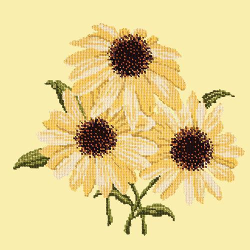 Echinaceas Needlepoint Kit Elizabeth Bradley Design Butter Yellow