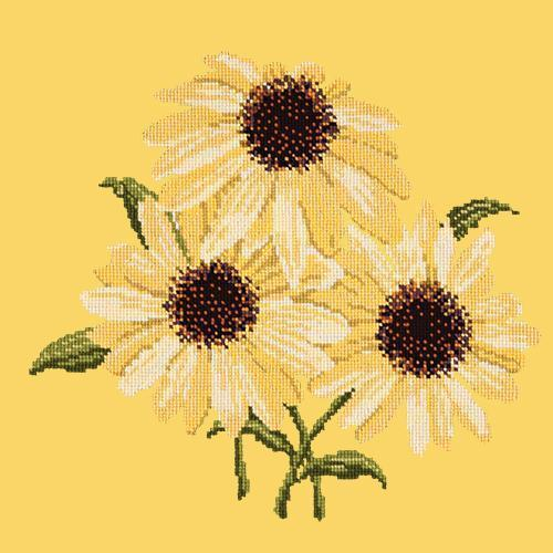 Echinaceas Needlepoint Kit Elizabeth Bradley Design Sunflower Yellow