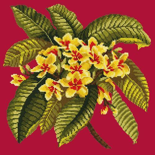 Frangipani Needlepoint Kit Elizabeth Bradley Design Bright Red