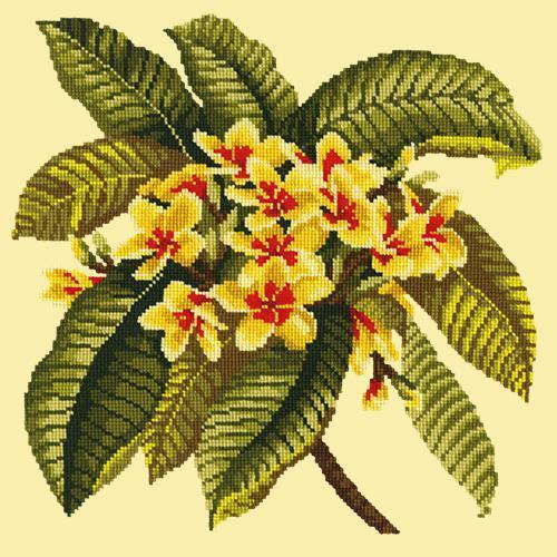 Frangipani Needlepoint Kit Elizabeth Bradley Design Butter Yellow