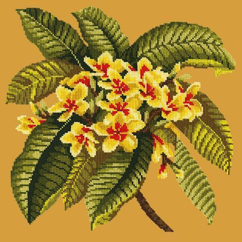 Frangipani Needlepoint Kit Elizabeth Bradley Design Yellow