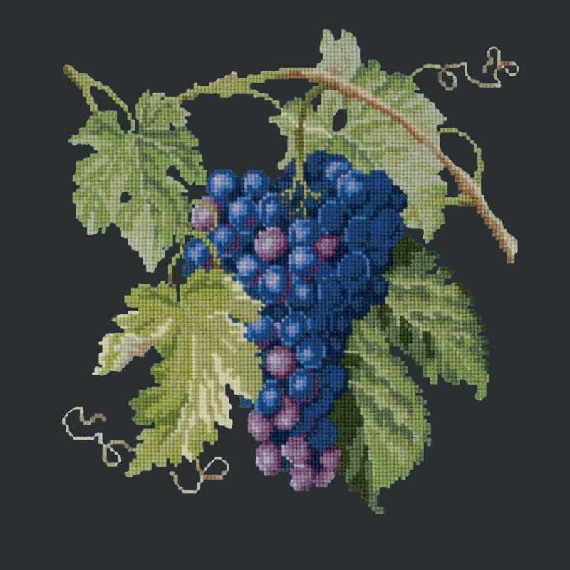 Grapes Needlepoint Kit Elizabeth Bradley Design Black