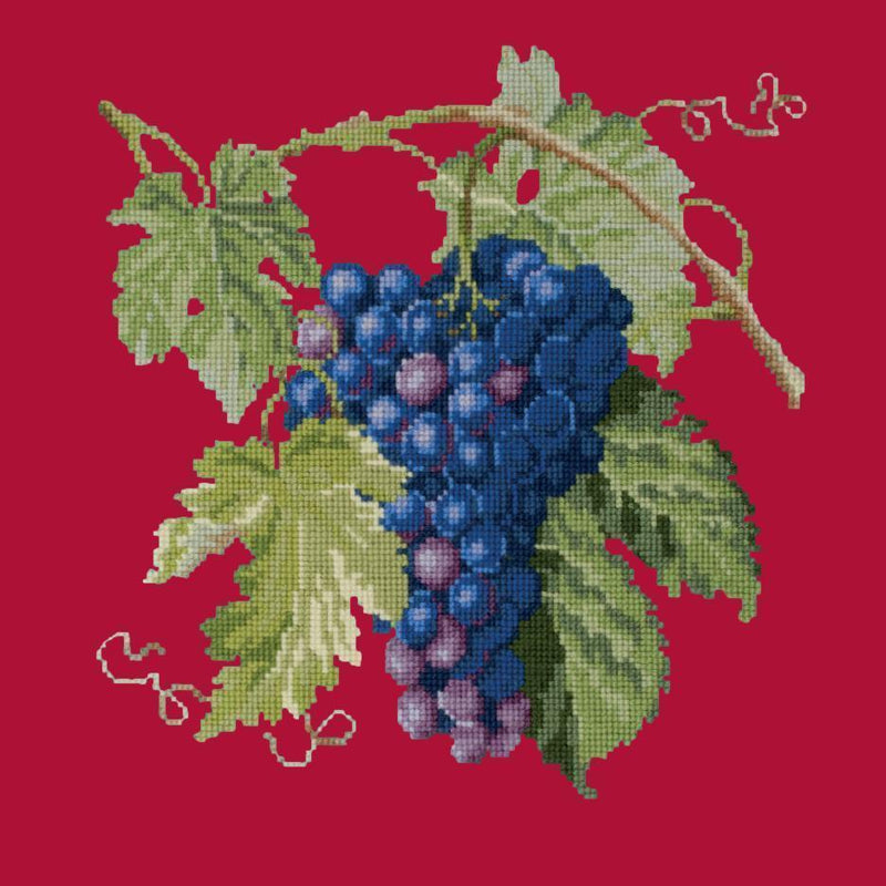 Grapes Needlepoint Kit Elizabeth Bradley Design Bright Red