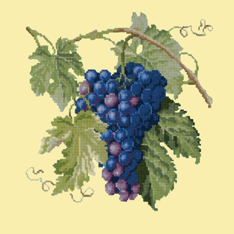 Grapes Needlepoint Kit Elizabeth Bradley Design Butter Yellow