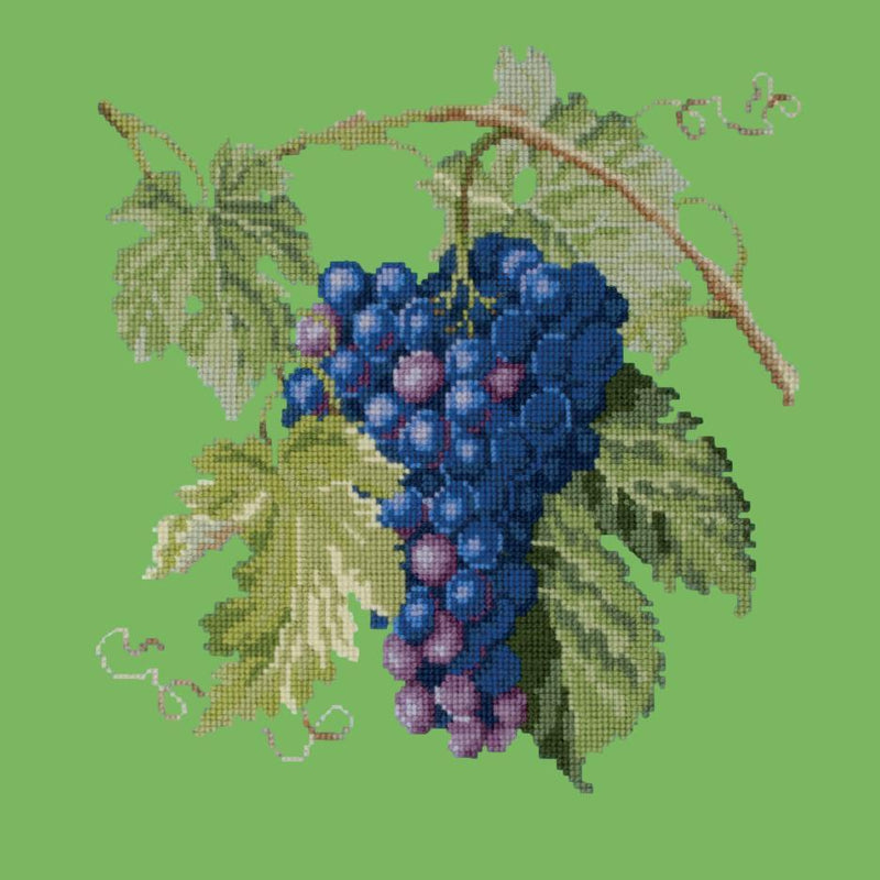 Grapes Needlepoint Kit Elizabeth Bradley Design Grass Green