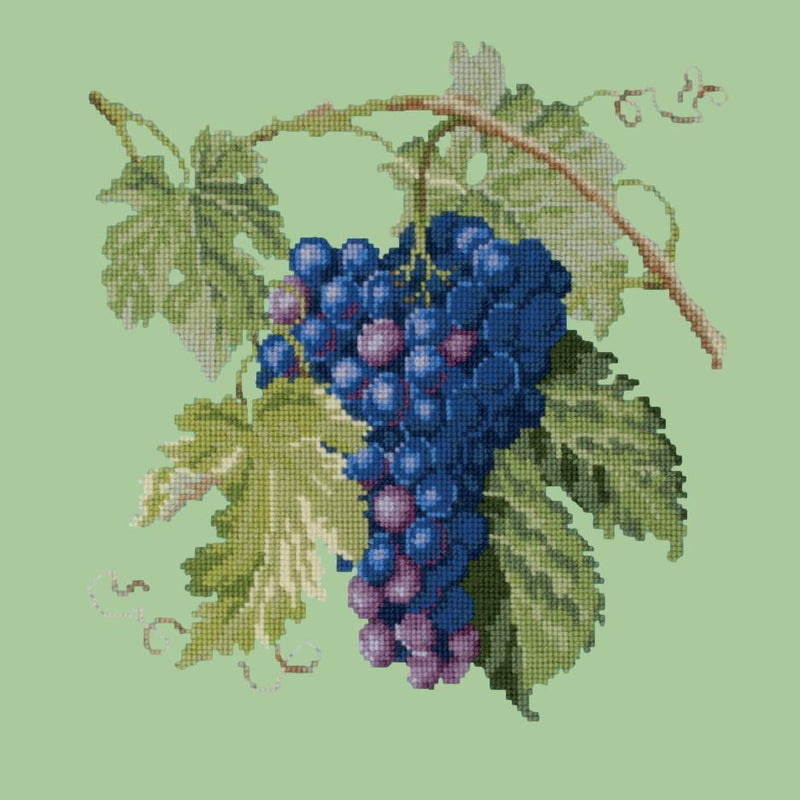 Grapes Needlepoint Kit Elizabeth Bradley Design Pale Green