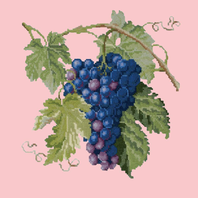 Grapes Needlepoint Kit Elizabeth Bradley Design Pale Rose