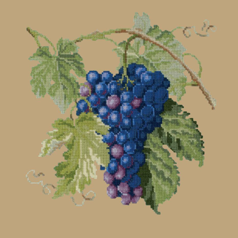 Grapes Needlepoint Kit Elizabeth Bradley Design Sand