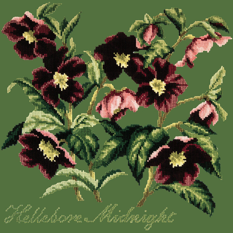 Hellebore Midnight Needlepoint Kit Elizabeth Bradley Design Dark Green