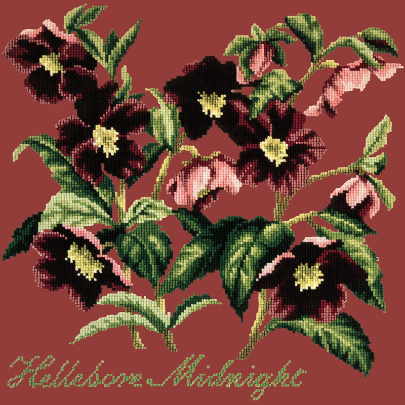 Hellebore Midnight Needlepoint Kit Elizabeth Bradley Design Dark Red