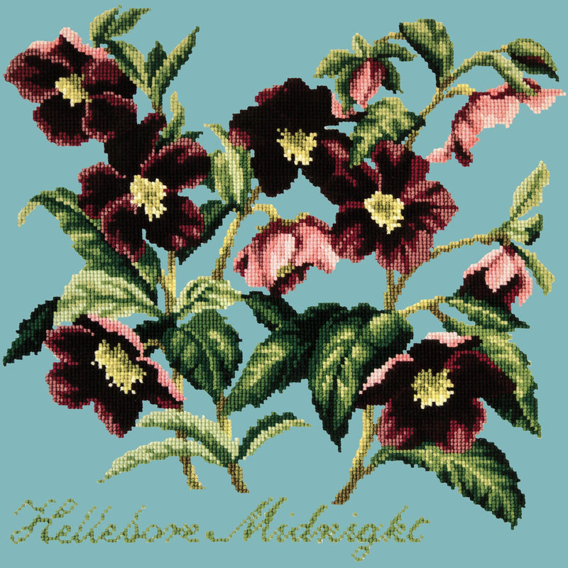 Hellebore Midnight Needlepoint Kit Elizabeth Bradley Design Duck Egg Blue