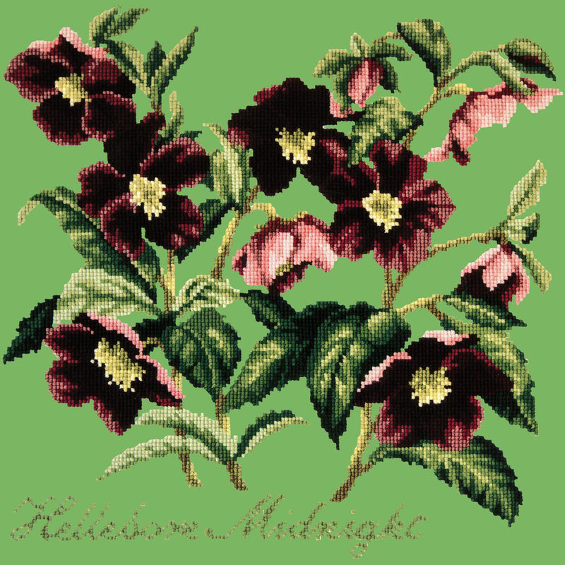 Hellebore Midnight Needlepoint Kit Elizabeth Bradley Design Grass Green