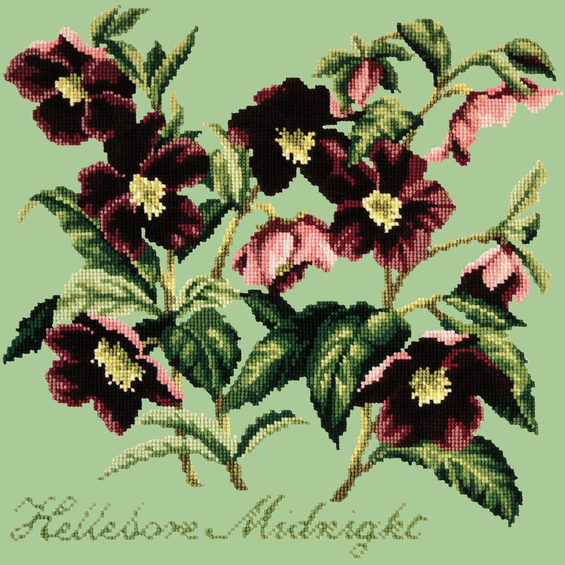 Hellebore Midnight Needlepoint Kit Elizabeth Bradley Design Pale Green