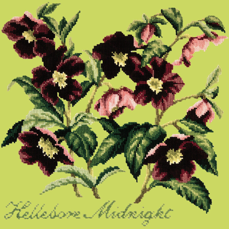 Hellebore Midnight Needlepoint Kit Elizabeth Bradley Design Pale Lime