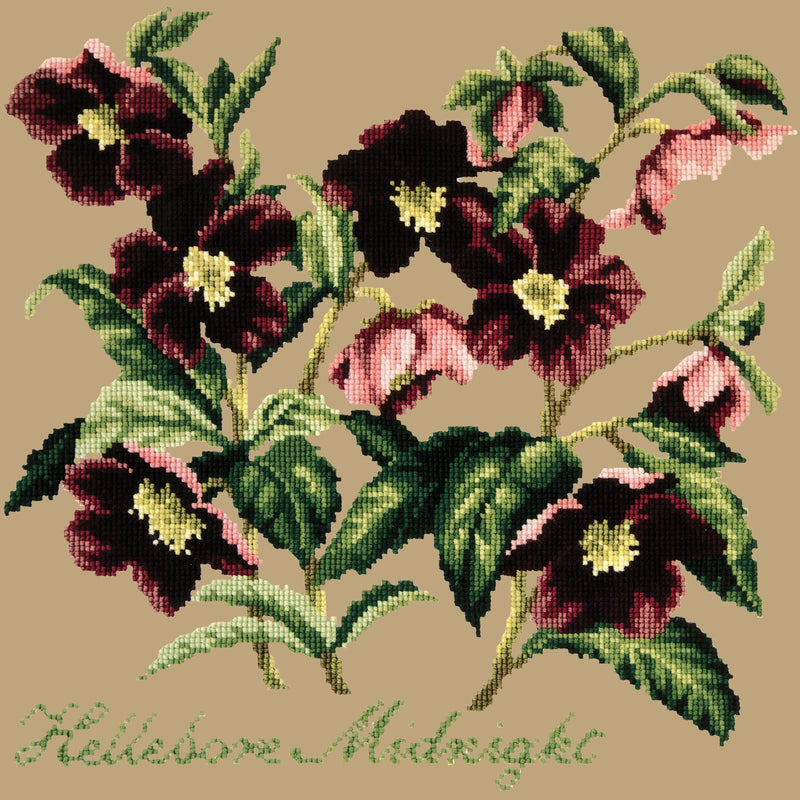Hellebore Midnight Needlepoint Kit Elizabeth Bradley Design Sand