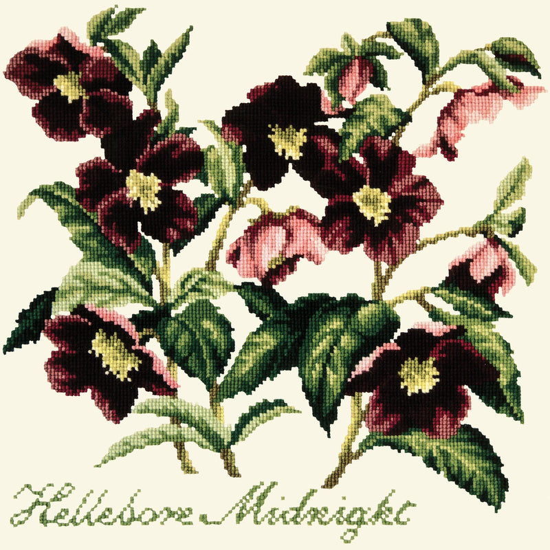 Hellebore Midnight Needlepoint Kit Elizabeth Bradley Design Winter White
