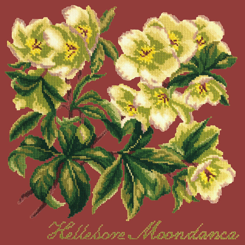 Hellebore Moondance Needlepoint Kit Elizabeth Bradley Design Dark Red