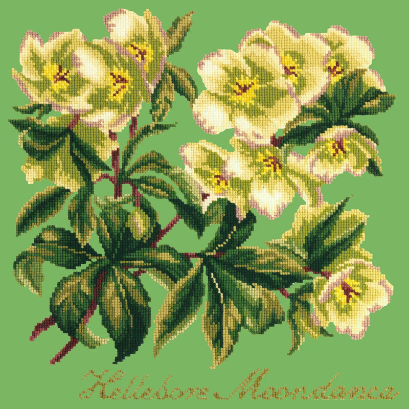 Hellebore Moondance Needlepoint Kit Elizabeth Bradley Design Grass Green