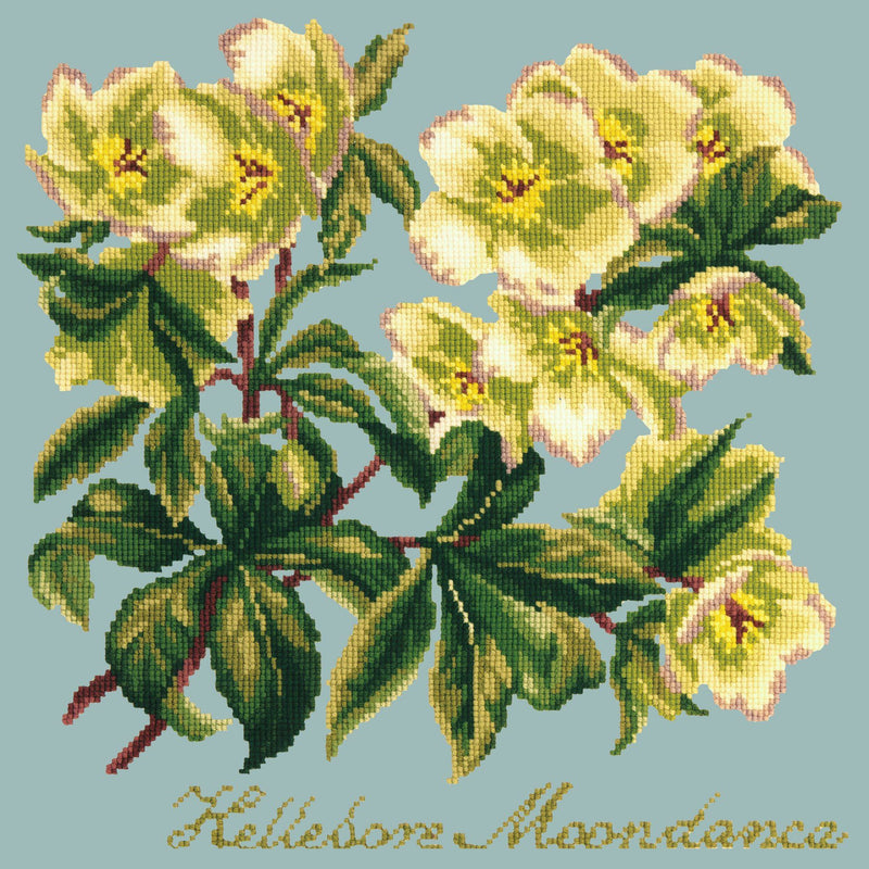 Hellebore Moondance Needlepoint Kit Elizabeth Bradley Design Pale Blue