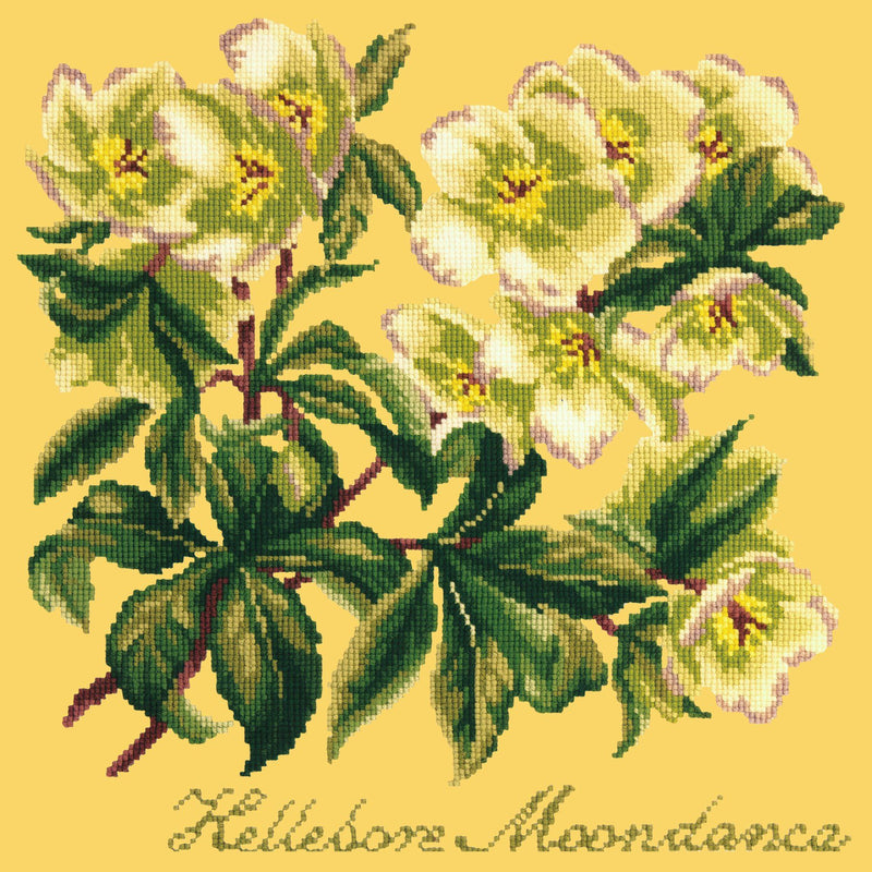 Hellebore Moondance Needlepoint Kit Elizabeth Bradley Design Sunflower Yellow