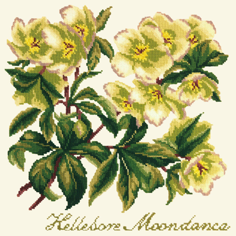 Hellebore Moondance Needlepoint Kit Elizabeth Bradley Design Winter White