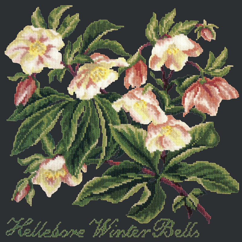 Hellebore Winter Bells Needlepoint Kit Elizabeth Bradley Design Black