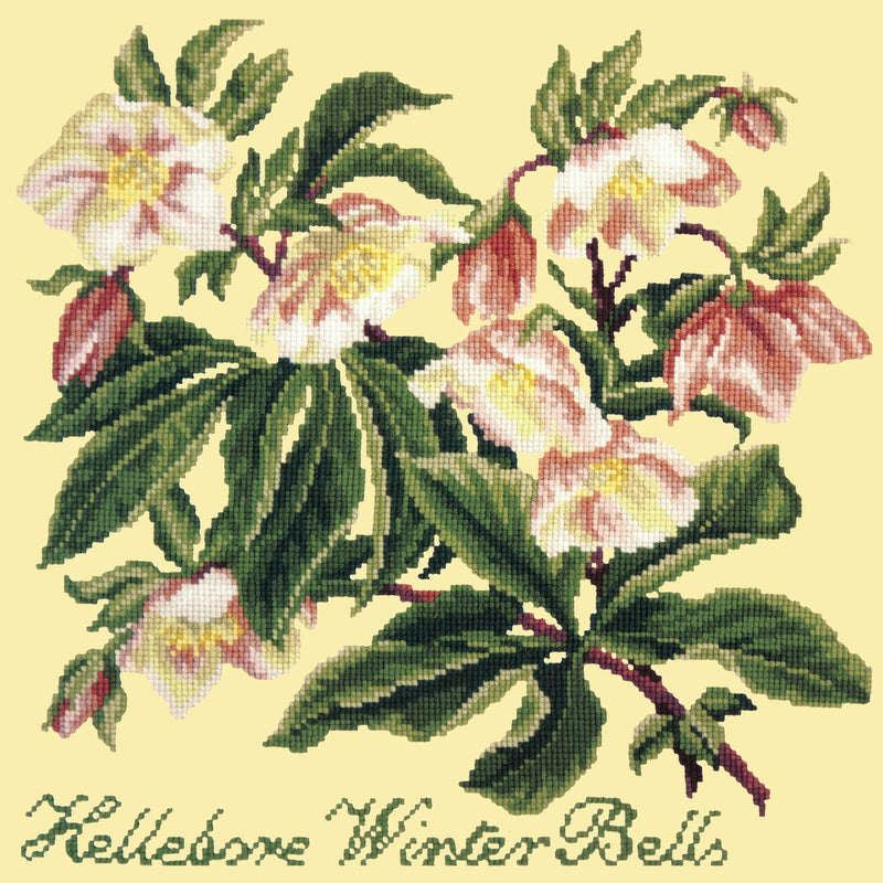 Hellebore Winter Bells Needlepoint Kit Elizabeth Bradley Design Butter Yellow