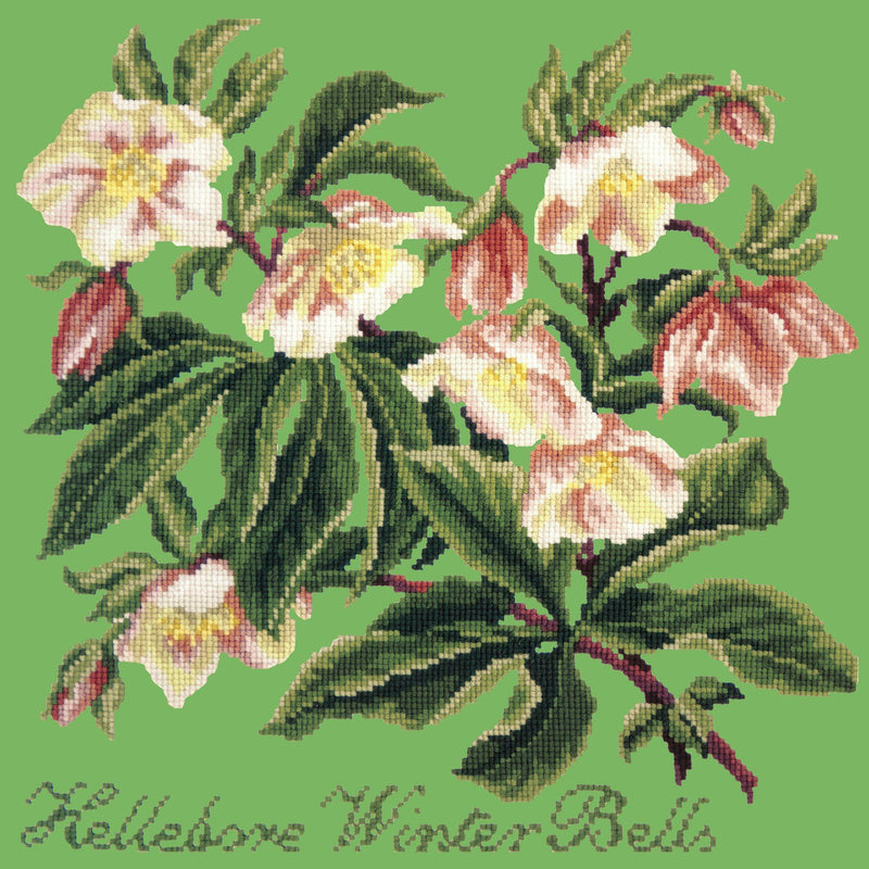 Hellebore Winter Bells Needlepoint Kit Elizabeth Bradley Design Grass Green