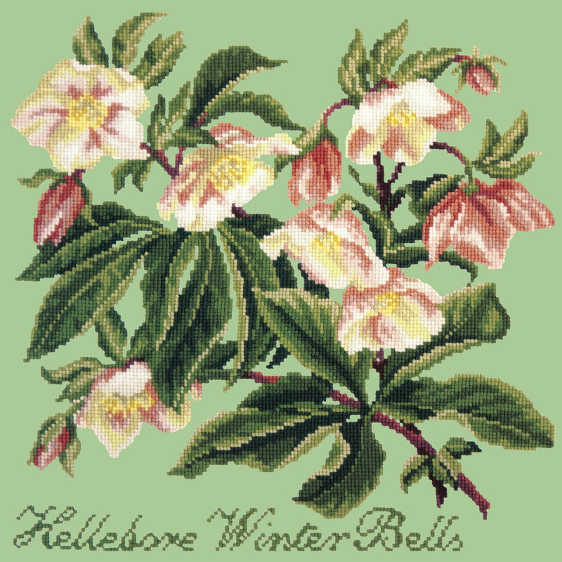 Hellebore Winter Bells Needlepoint Kit Elizabeth Bradley Design Pale Green
