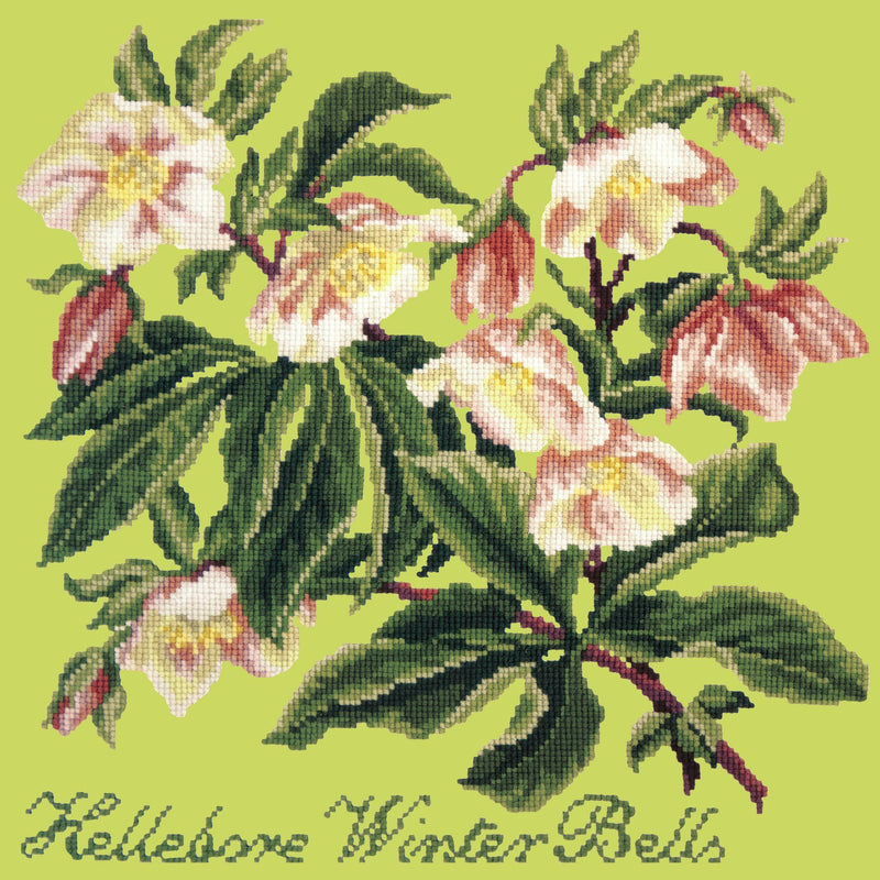 Hellebore Winter Bells Needlepoint Kit Elizabeth Bradley Design Pale Lime