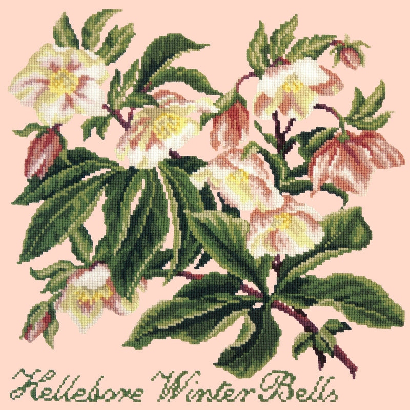 Hellebore Winter Bells Needlepoint Kit Elizabeth Bradley Design Salmon Pink