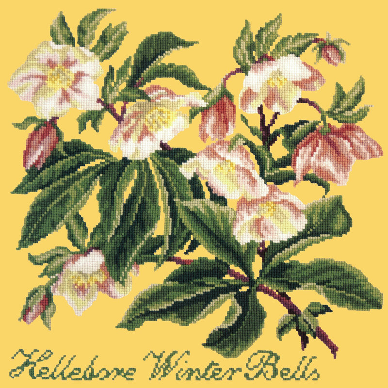 Hellebore Winter Bells Needlepoint Kit Elizabeth Bradley Design Sunflower Yellow