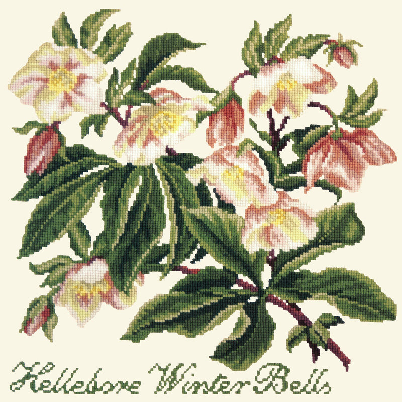 Hellebore Winter Bells Needlepoint Kit Elizabeth Bradley Design Winter White