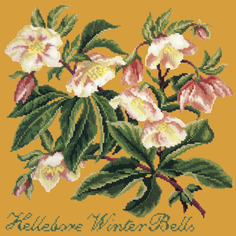 Hellebore Winter Bells Needlepoint Kit Elizabeth Bradley Design Yellow