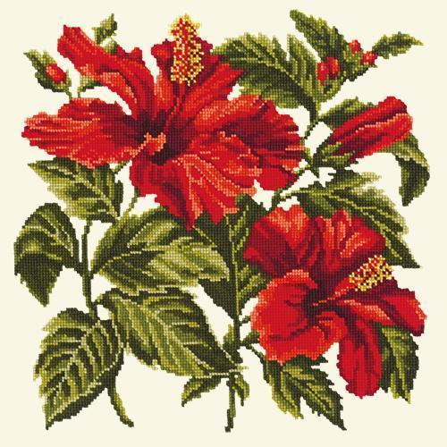 Hibiscus Needlepoint Kit Elizabeth Bradley Design Winter White