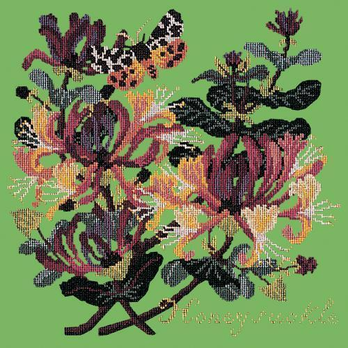 Honeysuckle Needlepoint Kit Elizabeth Bradley Design Grass Green