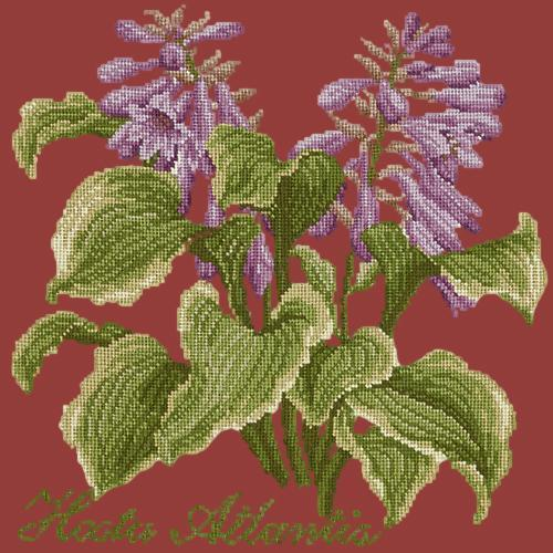 Hosta Atlantis Needlepoint Kit Elizabeth Bradley Design Dark Red