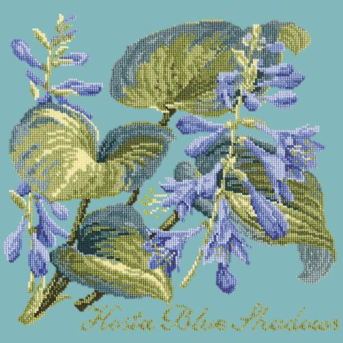 Hosta Blue Shadows Needlepoint Kit Elizabeth Bradley Design Duck Egg Blue