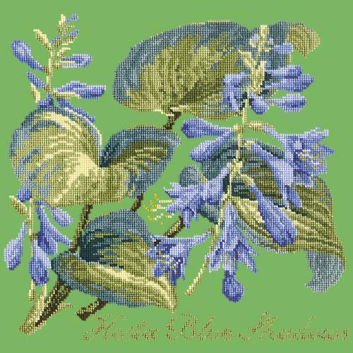 Hosta Blue Shadows Needlepoint Kit Elizabeth Bradley Design Grass Green