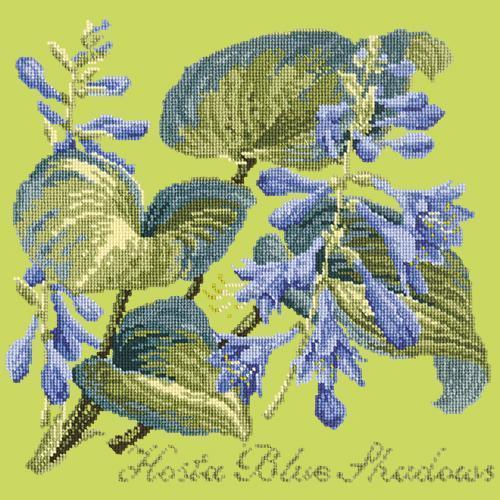 Hosta Blue Shadows Needlepoint Kit Elizabeth Bradley Design Pale Lime
