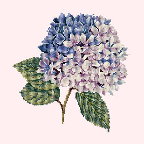 Hydrangea Needlepoint Kit Elizabeth Bradley Design Cream