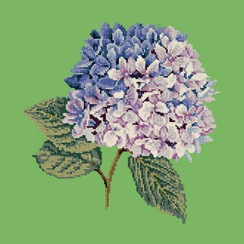 Hydrangea Needlepoint Kit Elizabeth Bradley Design Grass Green