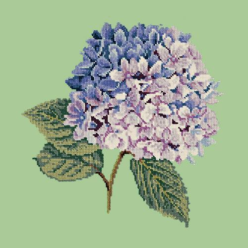 Hydrangea Needlepoint Kit Elizabeth Bradley Design Pale Green